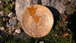 Obrázek výrobku: Talíř malý s tulipánem - 18 cm