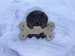 Obrázek výrobku: Cedulka s jezevčíkem-různé druhy srsti