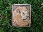Výrobek: Magnetka keramická- lev