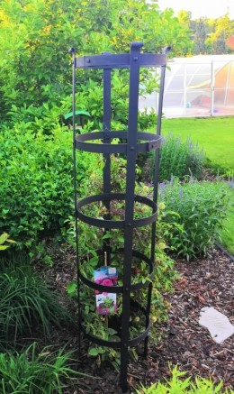 Obrázek výrobku: Tubus na růže a jiné popínavé rostliny
