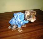 Výrobek: Obleček pro pejska - modrý melír